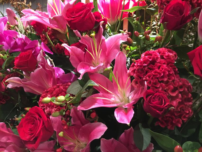 お店の隣りが9月1日にオープンするという事で綺麗な華が飾られてました✨  やっぱり花は咲き頃が立派です😎  #日本#東京#銀座#店#隣り#9月1日#オープン#花#綺麗#立派  #Japan#Tokyo#Ginza#store#NextDoor#September1#Open#flower#beautiful#fine  #일본#도쿄#긴자#매장#옆#9월1일#오픈#꽃#예쁜#좋은
