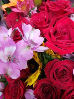 freshflowers colorfullmix