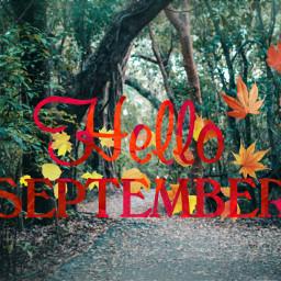 freetoedit dalysticker helloseptember autumncoming leavs