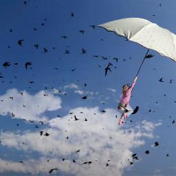 freetoedit remixit daylyremix woman birds ftestickers