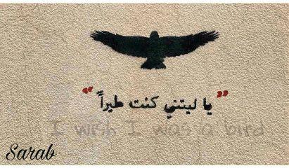 wish hope want freedom beauty