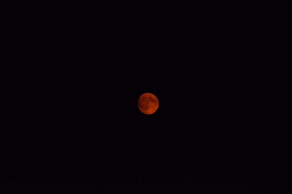 #freetoedit #moon #orange #orangemoon #space #night #photography #astrophotography #remixme