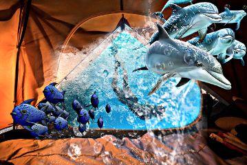 freetoedit underwater fish dolphin tent