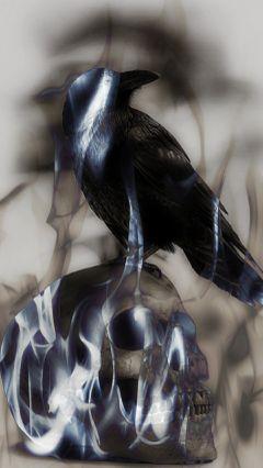 skull&fire&crow blackandwhite darkart skull
