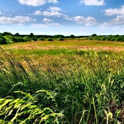 freetoedit nature naturephotography photography landscape dpcfields