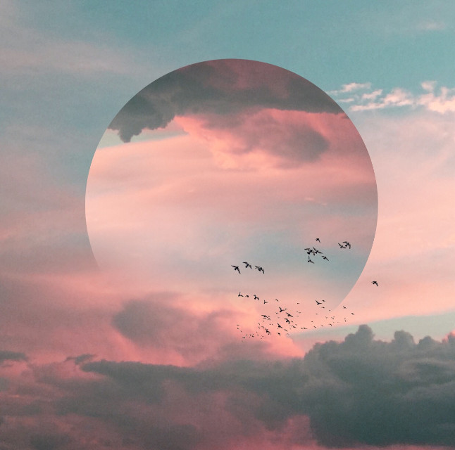 Candy sky vibes  #myphoto #edit #clouds #shapecrop #surreal