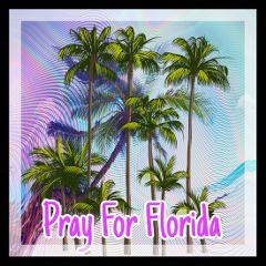 freetoedit florida prayforflorida hurricaneirma hurricane