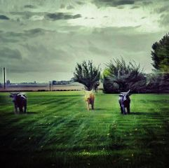 italy landscape three magicnumber seasons