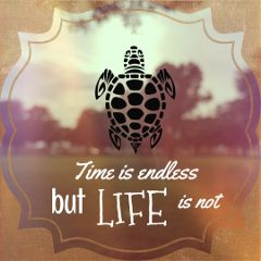 life quotes time endless freetoedit