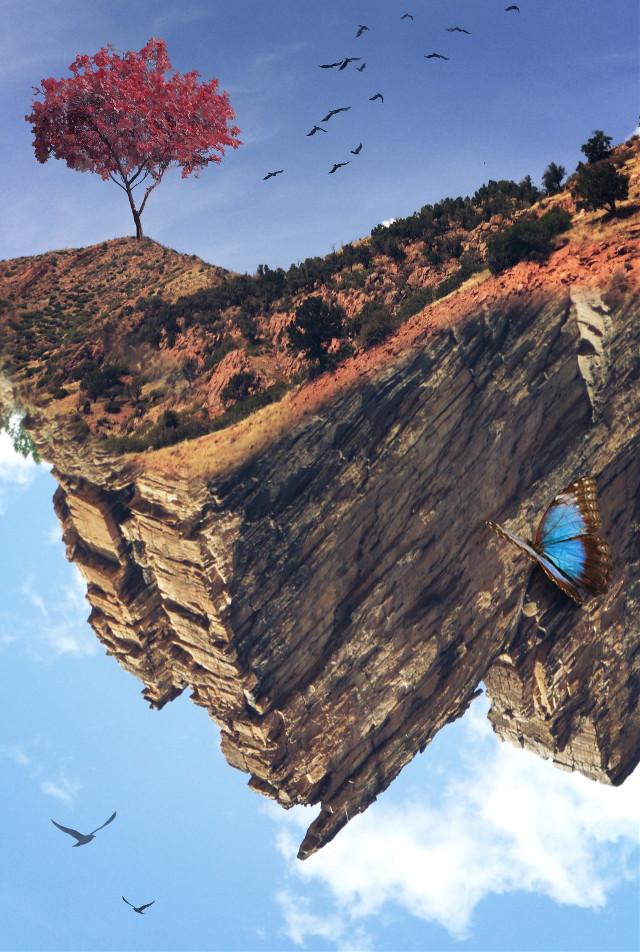 #freetoedit #upsidedown #surreal #landscape #nature #tree #butterfly #myphoto #edited #madewithpicsart