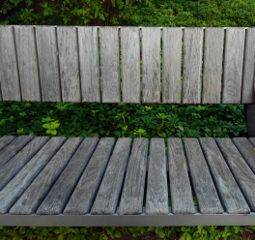 freetoedit wooden bench shrubbery seating
