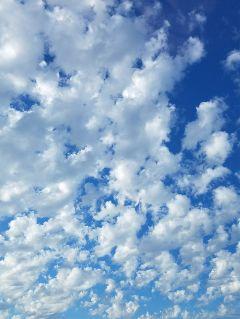 lookingup sky freetoedit