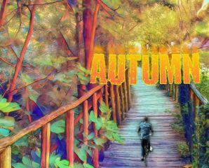 vipshoutout nature seasons autumn freetoedit