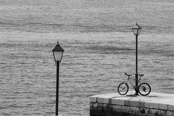 freetoedit blackandwhite sea bicycle summer