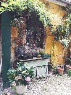 retro photography garden vintage idyllic