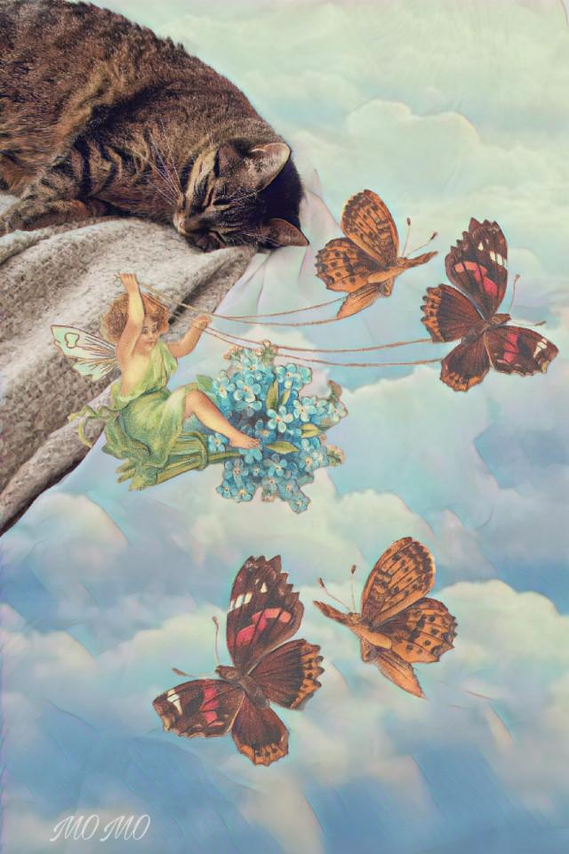 good night & sweet dreams dear @pa friends 🌜#fantasyart #myedit #overlay