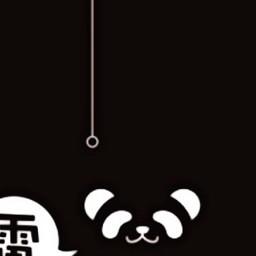 panda cute freetoedit night dark