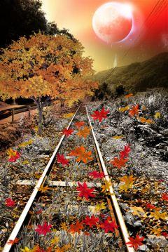 railway autumn freetoedit