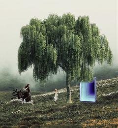 freetoedit people three tree color