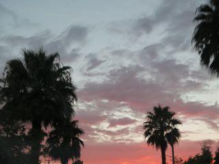 sunset red freetoedit blackandwhite colorful