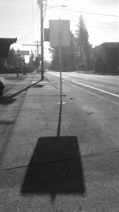 shadows blackandwhite streetphotography sunlight freetoedit