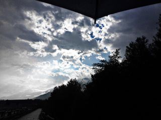 after raining morning view walking freetoedit