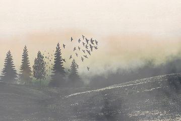 mysteriouslandscape freetoedit dailyremix
