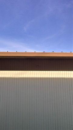 minimalistic lines building sky sunlight freetoedit