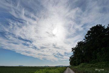 freetoedit cloud