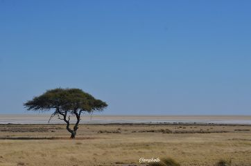 nature desert photography africa