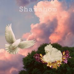 freetoedit shazahom1 dreams illusion freestyleart