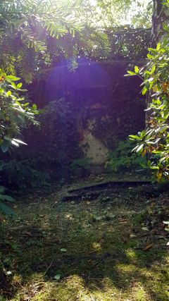 walk cemetery gravesite forgotten forgottenplaces
