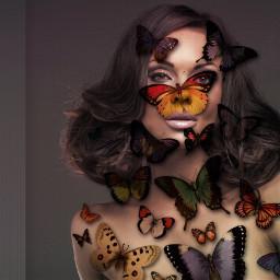 freetoedit africanamerican butteflies myedit publicdomainimage