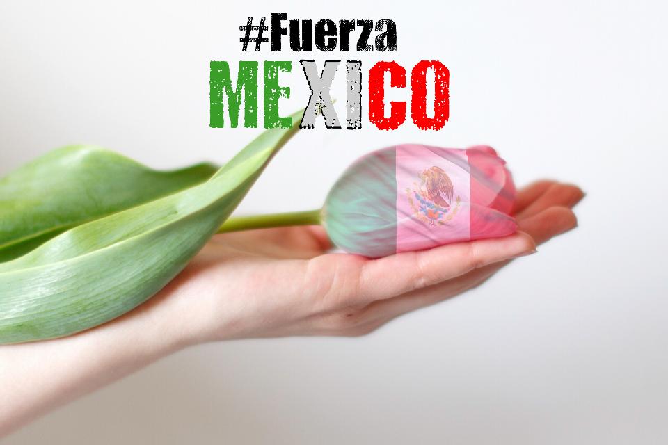 #prayforMexico #MiMexicoLindo 😢💔