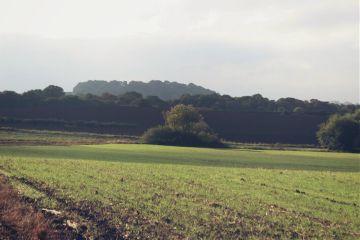 countryside fields adjusttool dodgereffect outandabout