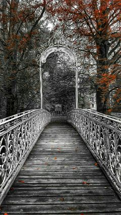 freetoedit blackandwhite colorsplash bridge autumn