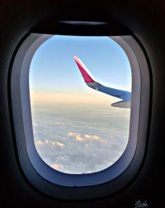 freetoedit airplane sky horizon sunset