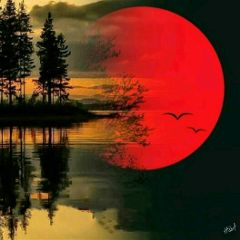lake moon birds trees colorsplash
