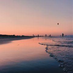 freetoedit landscape love beach sunset