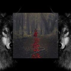 freetoedit littleredridinghood bigbadwolf photography mirror