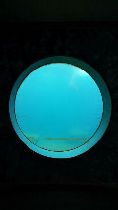 freetoedit blue water zoo travel