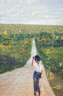freetoedit sunflowerfield friend