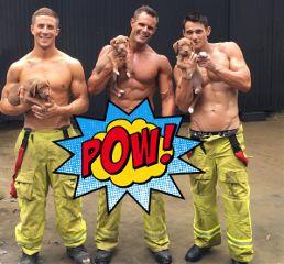 freetoedit pow dailysticker dailystickerremix firemen