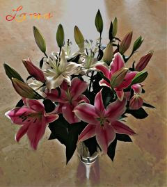 lilly pink oilpaintingeffect