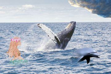 freetoedit myedit whaleremix