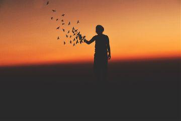 sunset people birds art