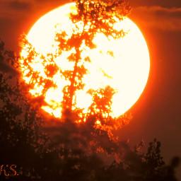 freetoedit sunset ig_nature natureshot harz