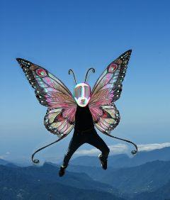 freetoedit remix remixme remixed butterfly