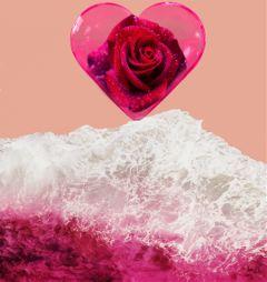 freetoedit yesi_502 redrose hearts oceanpink