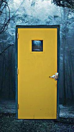 door blue woods forest lost